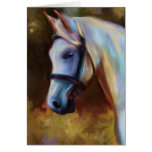 Horse of Colours - Horse painting Cards