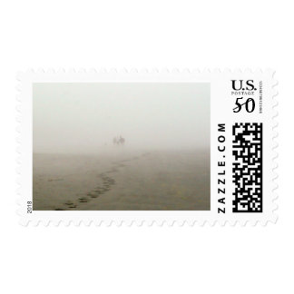 Horse on beach postage