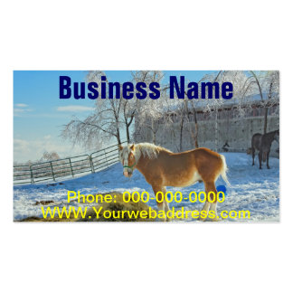 Horse On Farm After Snow And Ice Storm Business Card