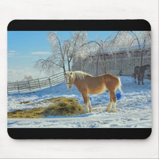 Horse On Farm After Snow And Ice Storm Mouse Pad