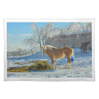 Horse On Farm After Snow And Ice Storm Place Mat