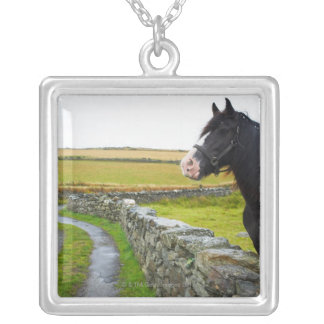 Horse on farm in rural England Square Pendant Necklace