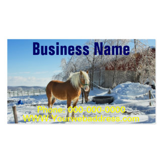 Horse On Maine Farm After Snow And Ice Storm Business Card