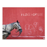 Horse on Red Background Postcard
