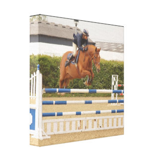 Horse Over Fence Canvas Print
