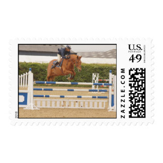 Horse Over Fence Postage Stamp