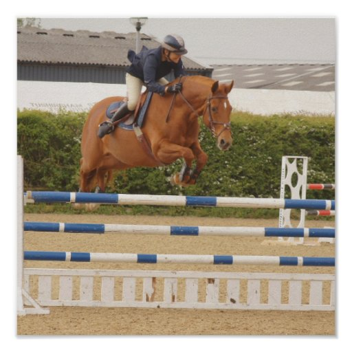 Horse Over Fence Poster