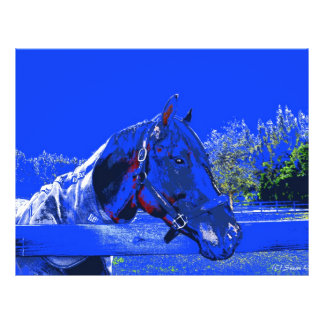 horse over fence side view blue cartoon full color flyer