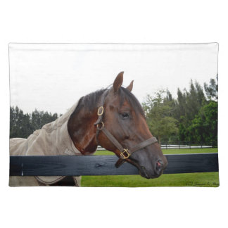 horse over fence side view cloth placemat