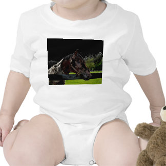 horse over fence side view dark colors shirts
