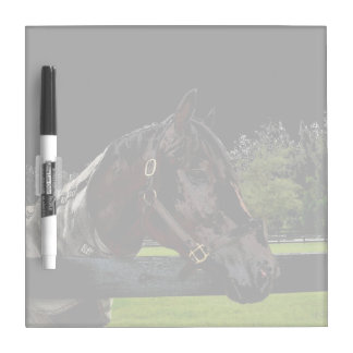 horse over fence side view dark Dry-Erase board