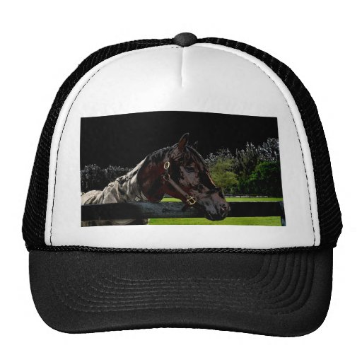 horse over fence side view dark trucker hat