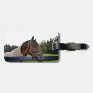 horse over fence side view tags for luggage