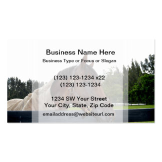 horse over fence side view sky change Double-Sided standard business cards (Pack of 100)