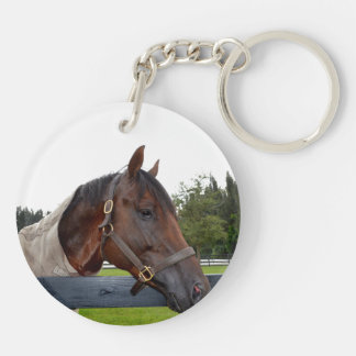 horse over fence side view sky change keychain