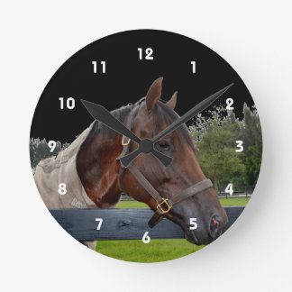 horse over fence side view sky change round clock