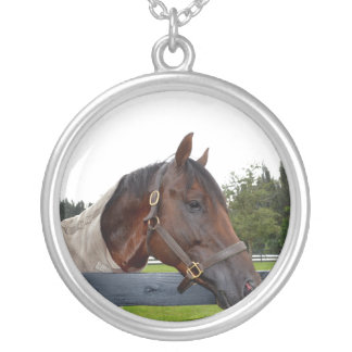 horse over fence side view sky change silver plated necklace