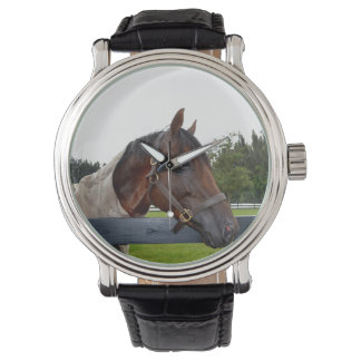 horse over fence side view sky change wrist watches