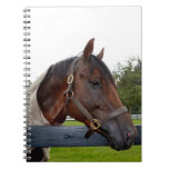 horse over fence side view spiral notebooks