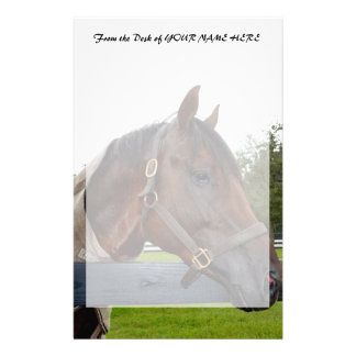 horse over fence side view stationery