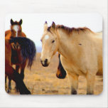 Horse pad mouse pad