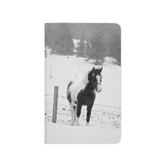 Horse Paddock Pasture Field Winter Snowstorm Scene Journal