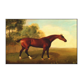horse  painting 14 gallery wrap canvas