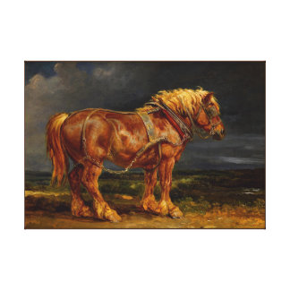 horse  painting 1 stretched canvas prints