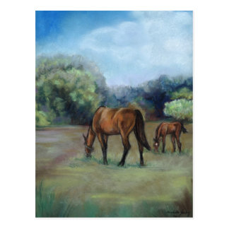 """Horse Pasture"" Art Postcard"