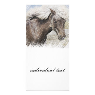 Horse,pencil Photo Card