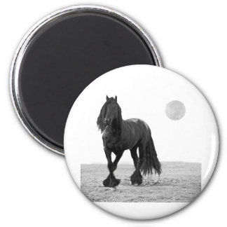 Horse perfect magnet