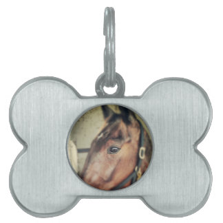 Horse Pet Name Tags