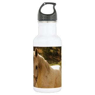 Horse 18oz Water Bottle