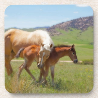 Horse Photo Mare and Foal  Home and Kitchen Decor Beverage Coaster