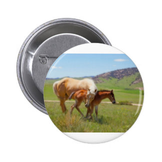 Horse Photo Mare and Foal  Home and Kitchen Decor Button
