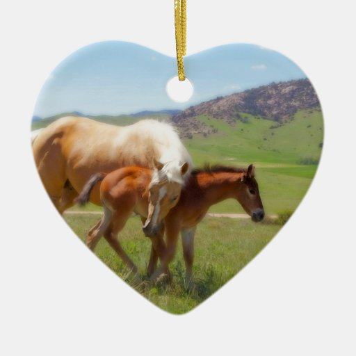 Horse Photo Mare And Foal Home And Kitchen Decor Ceramic Ornament Zazzle
