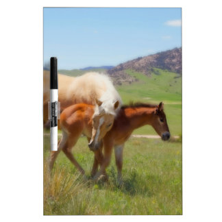 Horse Photo Mare and Foal  Home and Kitchen Decor Dry-Erase Board