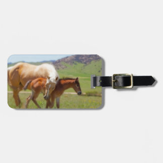 Horse Photo Mare and Foal  Home and Kitchen Decor Luggage Tag