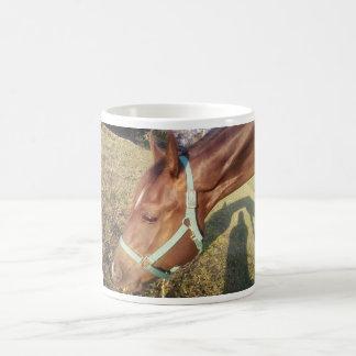 Horse Photo Mug