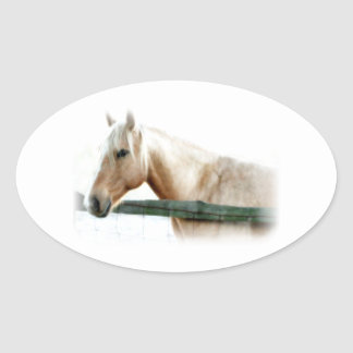 Horse Photo Oval Sticker