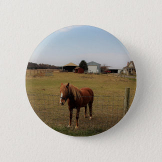 Horse Photo Pinback Button