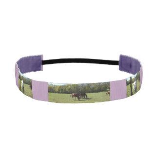 Horse pick headband