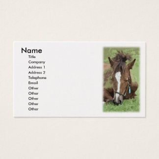 Horse Picture Business Card