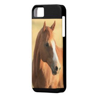 Horse picture iPhone SE/5/5s case