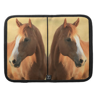 Horse picture organizers