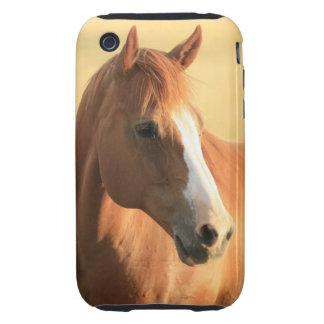 Horse picture tough iPhone 3 case