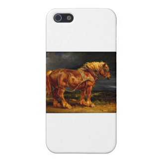 horse-pictures-11 iPhone 5 cover