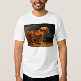 horse-pictures-11 tee shirts
