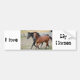 Horse Play Car Bumper Sticker