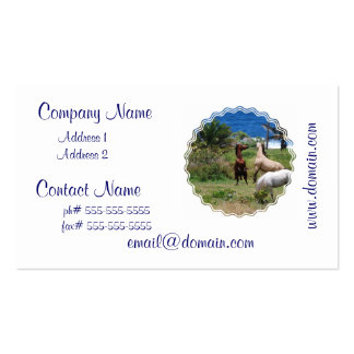 Horse Play Business Cards